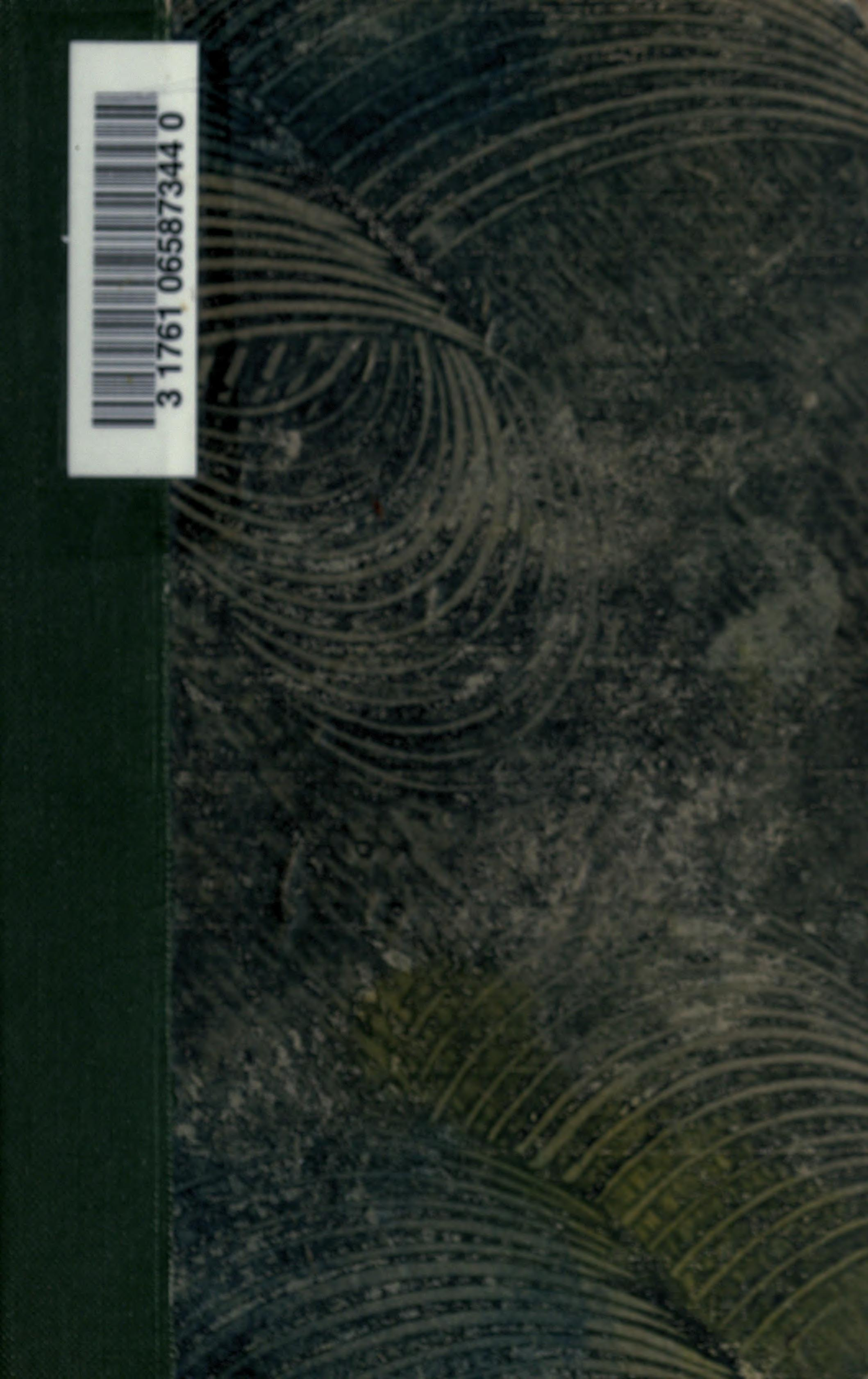 Salammbô Flaubert Gustave 1821 1880 Free Download Borrow And Streaming Internet Archive